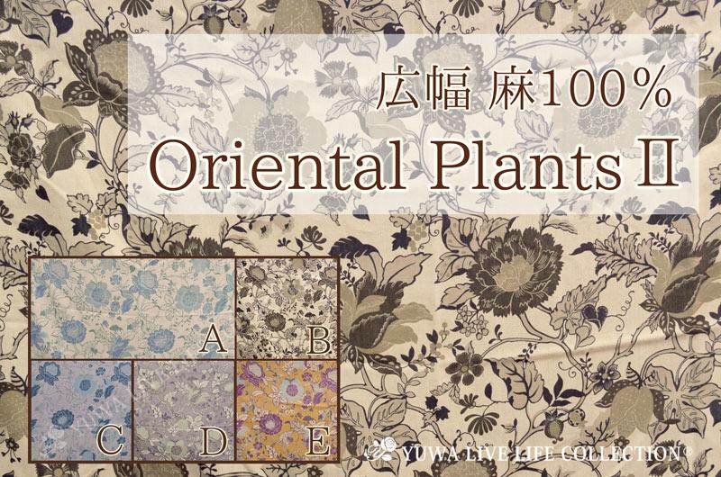 有輪商店 YUWA ゆうわ 生地 布 手作り ソーイング オリエンタル インド更紗 アジアン 植物 花柄 広幅